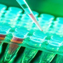 קנאביס רפואי וכימותרפיה - קנאביס עוזר נגד תופעות לוואי שכיחות של הכימותרפיה