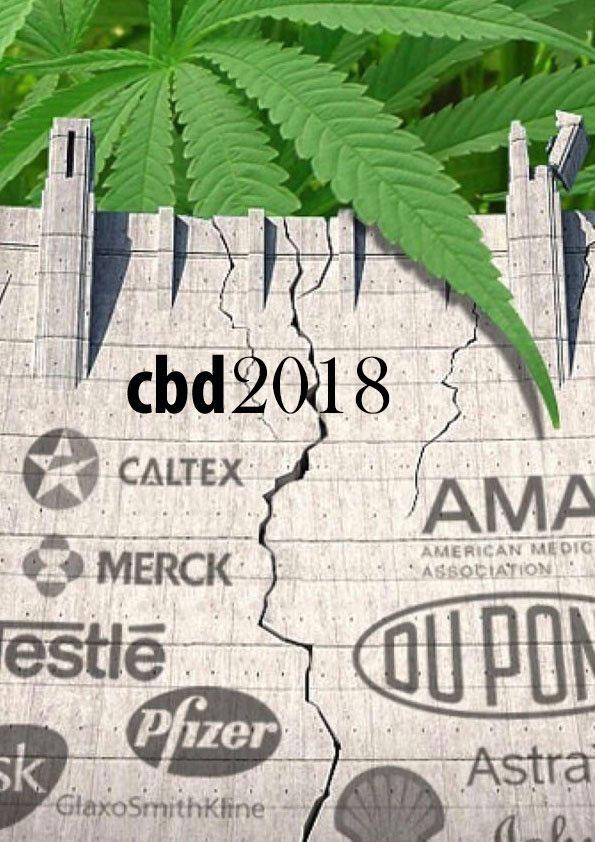 סי בי די – cbd הסוד הגדול של צמח הקנאביס -cbd באיזה מחלות מטפל?