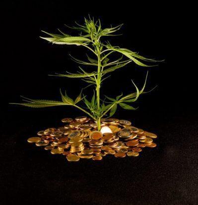 מטבעות קנאביס - מטבעות הקנאביס הוירטואלים שכדאי להכיר בכלכלת הבלוק- צ'יין