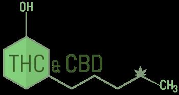 קנאביס רפואי - בקנאביס הרפואי - קבוצות הקנבינואידים בקנאביס הם – THC ו- CBD