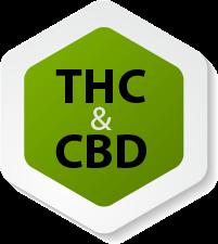 היחס הנכון בין THC ל CBD