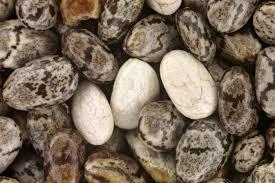 שמן זרעי צ'יה