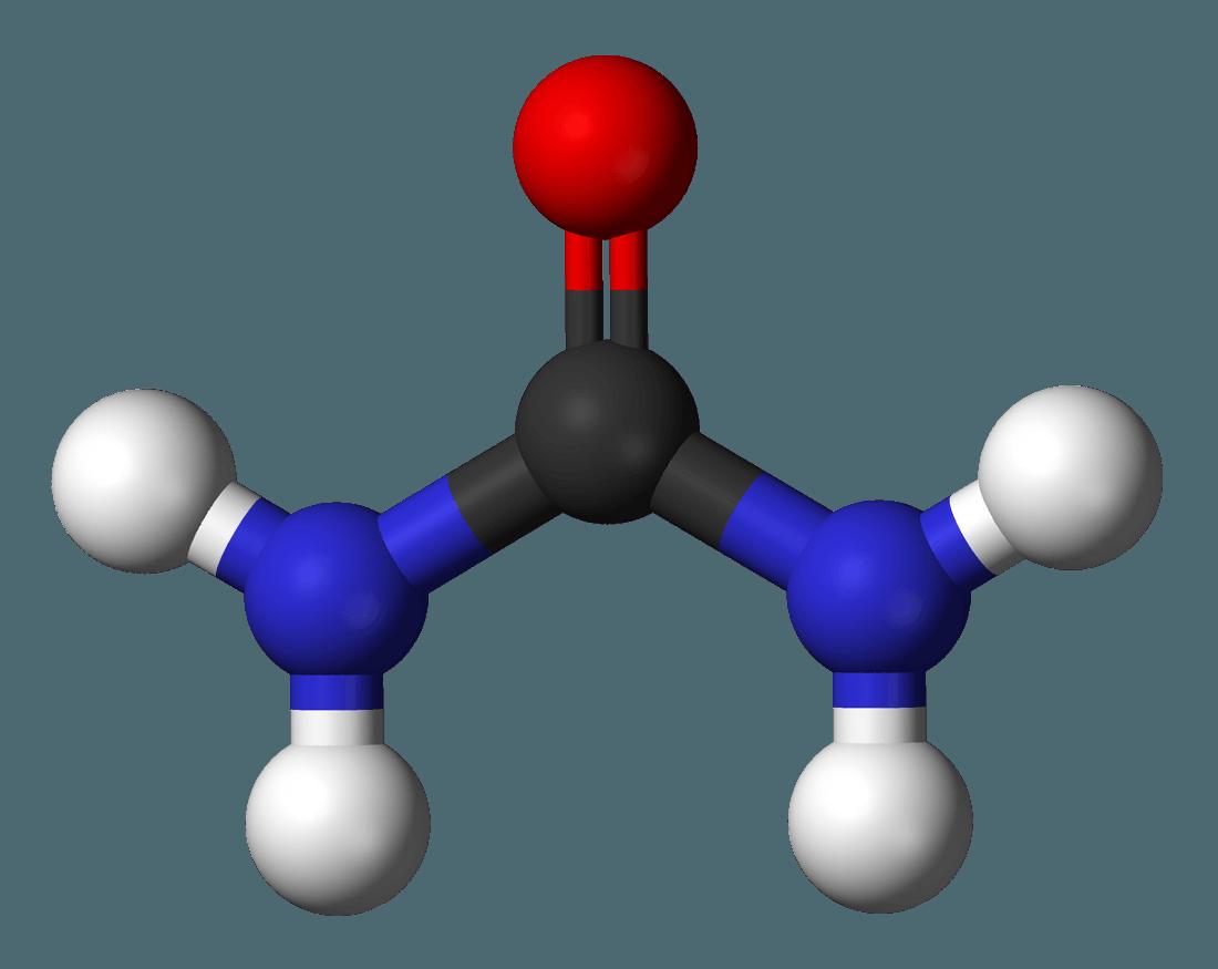שמן קנאביס ומערכת הדם
