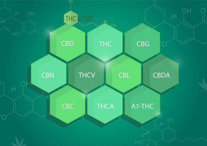 ההיסטוריה המדעית של צמח הקנאביס - גילויים להנגיש את שימושו הרפואי אל חולים
