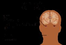 קנאביס בהתאמה אישית - תחום חדש בענף הרפואה האלטרנטיבית