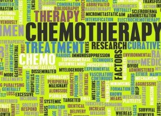 קנאביס רפואי | טיפול בקנאביס רפואי מאמרים מקצועיים ומחקרים חדשים