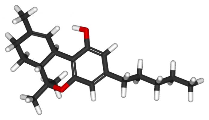 אודות טי אייץ סי החומר הפעיל בקנאביס THC - שמן קנאביס