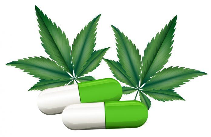 מהוא טיפול בקנאביס רפואי - טיפול בקנאביס טיפול טבעי בקנאביס רפואי