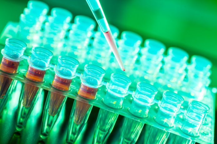 שמן המפ וכדורים מדללי דם - מה הם מדללי דם? למה זה טוב? מה הם התחלופות