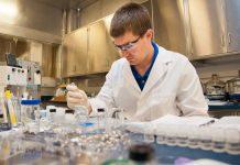 מה זה סי בי ג'י - CBG cbg דרכי עיכול מולקולה שאחראית CBG