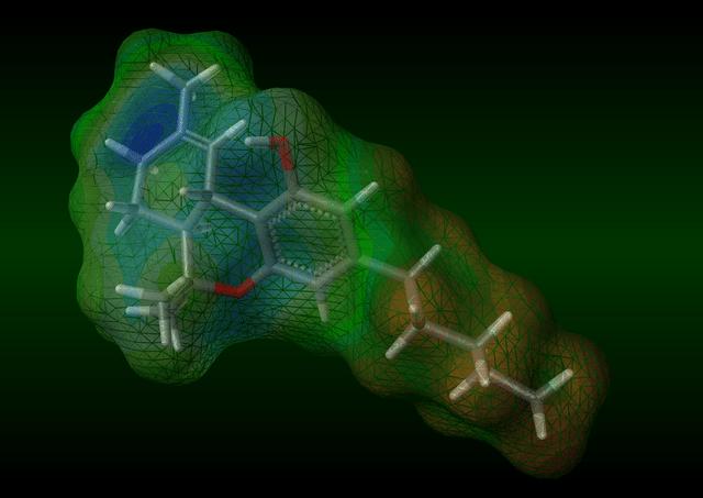 THC (טטראהידרוקנאבינול) והמערכת האנדו-קנבינואידית - -THC בודד בשנת 1946