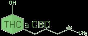 וריאציות של THC