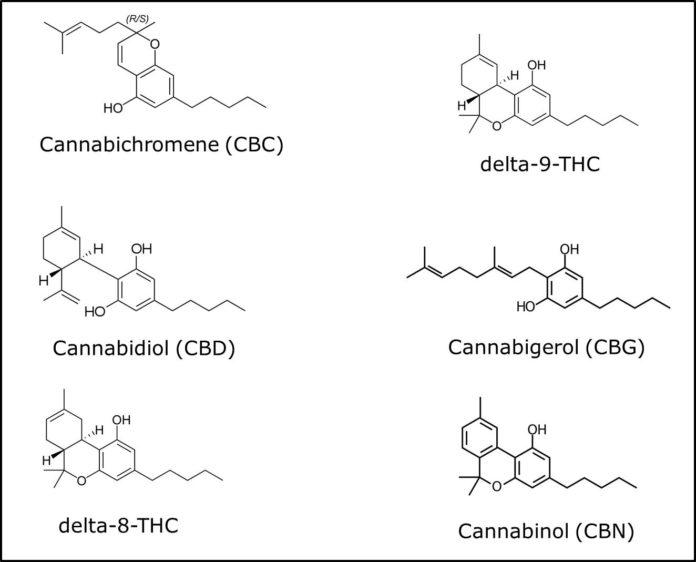 CBN- סי בי אן לשינה ותיאבון CBN קנאבינול- המולקולה שעוזרת תיאבון ולרצות לישון