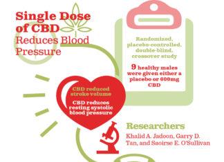 CBD - סי בי די - cbd cbd (קנאבידיול) המולקולה שמשגעת את עולם המדע