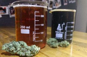 בירה עם THC