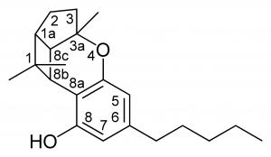 חומרים פעילים בקנאביס - רשימת החומרים הפעילים בצמח הקנאביס - שמן קנאביס