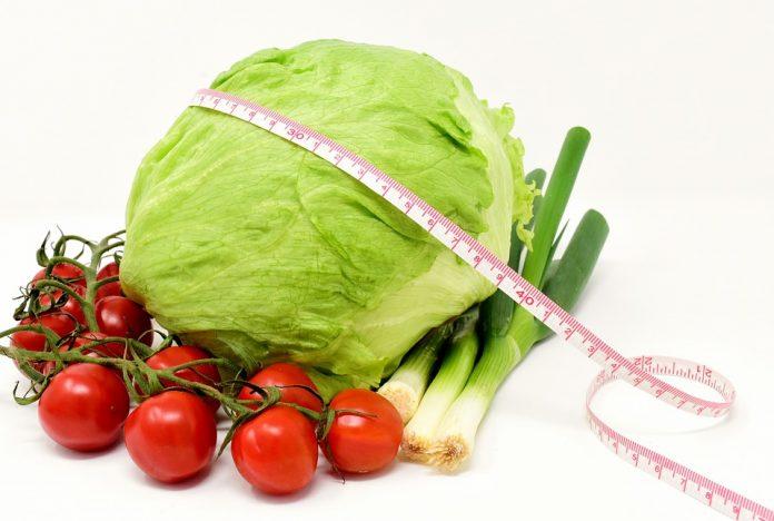 תזונה בריאה - שמן קנאביס תזונה בריאה, נכונה ומונעת מחלות - ותוספי המזון