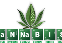 שמן THC - שמן קנאביס שמן תמצית הקנאביס thc&cbd oil