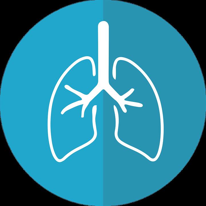 COPD - סי אוו פי די מחלת ריאות חסימתית כרונית copd - שמן קנאביס