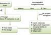 פיברומיאלגיה - השפעת הקנאביס הרפואי על מחלת הפיברומיאלגיה
