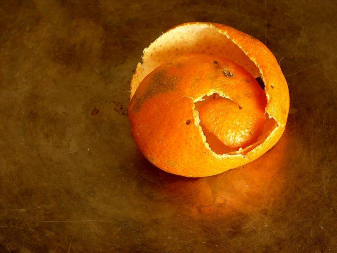 קליפות - קליפה כח הריפוי של הקליפה - שמן קנאביס הקליפות שזורקים