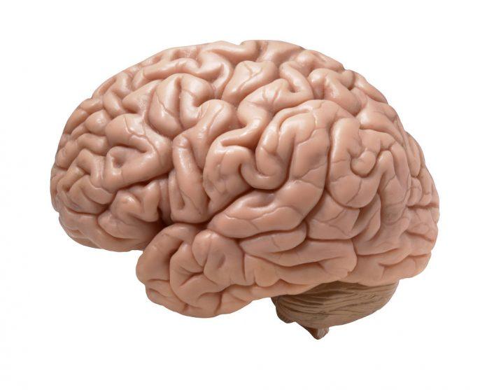 ריפוי בכוח המוח - שמן קנאביס היכולת שלנו לרפות את גופנו