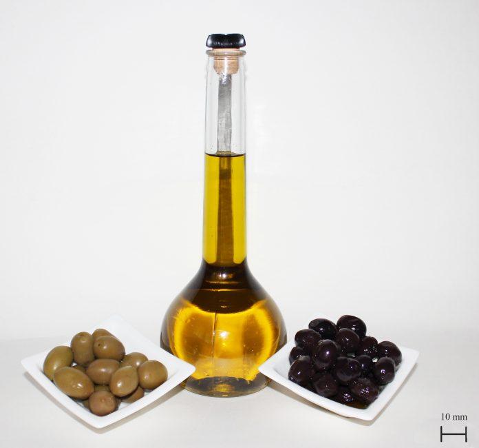 סגולות שמן זית - שמן קנאביס שמן הזית לטיפול מסרטן למחלות דם ועוד