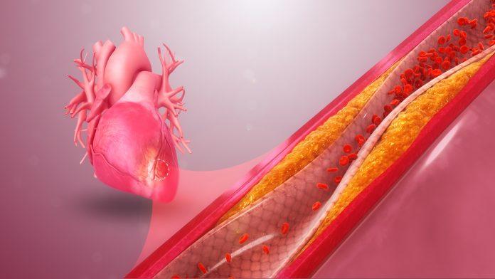 """וירוסים - לשמן """"חמשת השמנים"""" סגולות רבות ונפלאות תהליכים ביולוגים וכימיים שונים"""