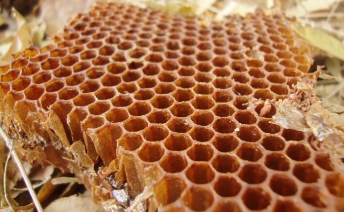 דבש קנאביס - שמן קנאביס דבש עם חומרים פעילים של הקנאביס