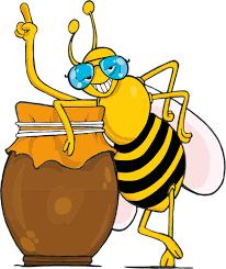 דבש קנאביס