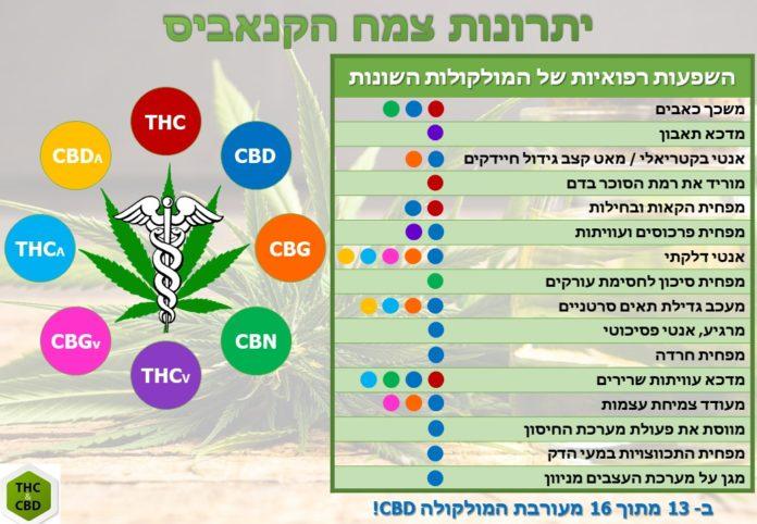 תרופות קנאביס - תרופות מבוססות קנאביס - שמן קנאביס תרופות מבוססות קנאביס thc&cbd